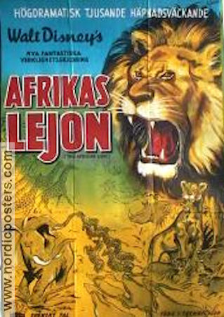 The African Lion 1955 poster Disney