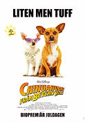 Chihuahuan från Beverly Hills 2009 poster