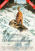 Den otroliga vandringen 1993 Movie poster Robert Hays