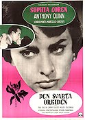 The Black Orchid 1959 Movie poster Sophia Loren