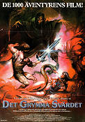 The Sword and the Sorcerer 1982 poster Lee Horsley Albert Pyunm