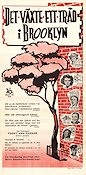 A Tree Grows in Brooklyn 1945 Movie poster Joan Blondell Elia Kazan