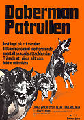 Doberman Patrol 1972 poster James Brolin