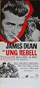 See a larger image of Rebel Without a Cause